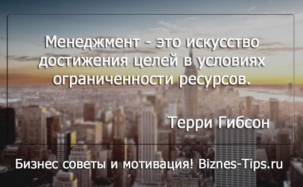 Бизнес цитатник - Терри Гибсон