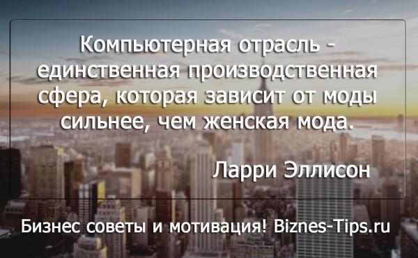 Бизнес цитатник - Ларри Эллисон