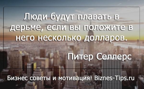 Бизнес цитатник - Питер Селлерс